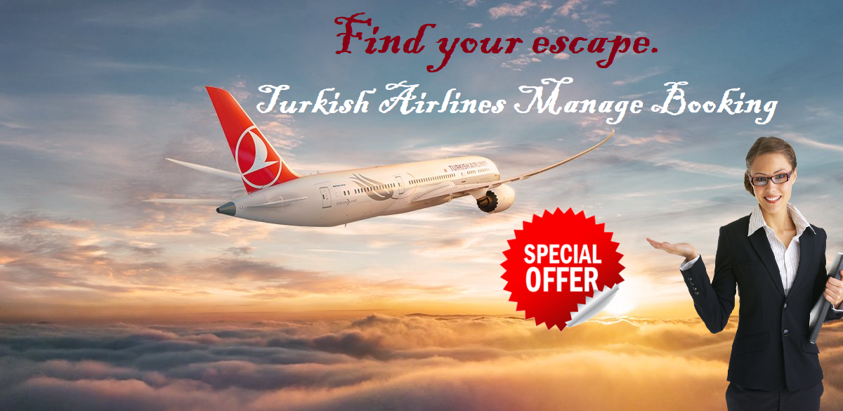 Get Amazing Deal On Turkish Airlines Buy One Get One Free For Business Class T C Apply Contact Us 0334 5488801 Turkish Airlines Airline Booking Airline Deals