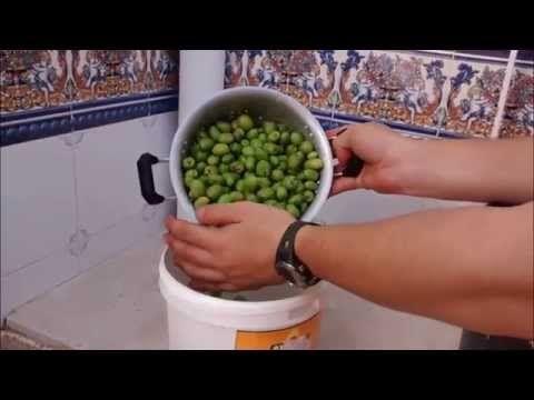 Cura Y Aliño Casero De Aceitunas Olivas Aceitunas Olivas Partidas Receta Abuela Youtube Aceitunas Aliñar Aceitunas Comida Saludable Ensaladas
