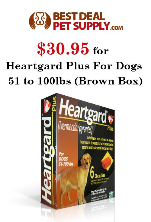 Best Deal Pet Supply is offering heartgard plus for dogs 51 to