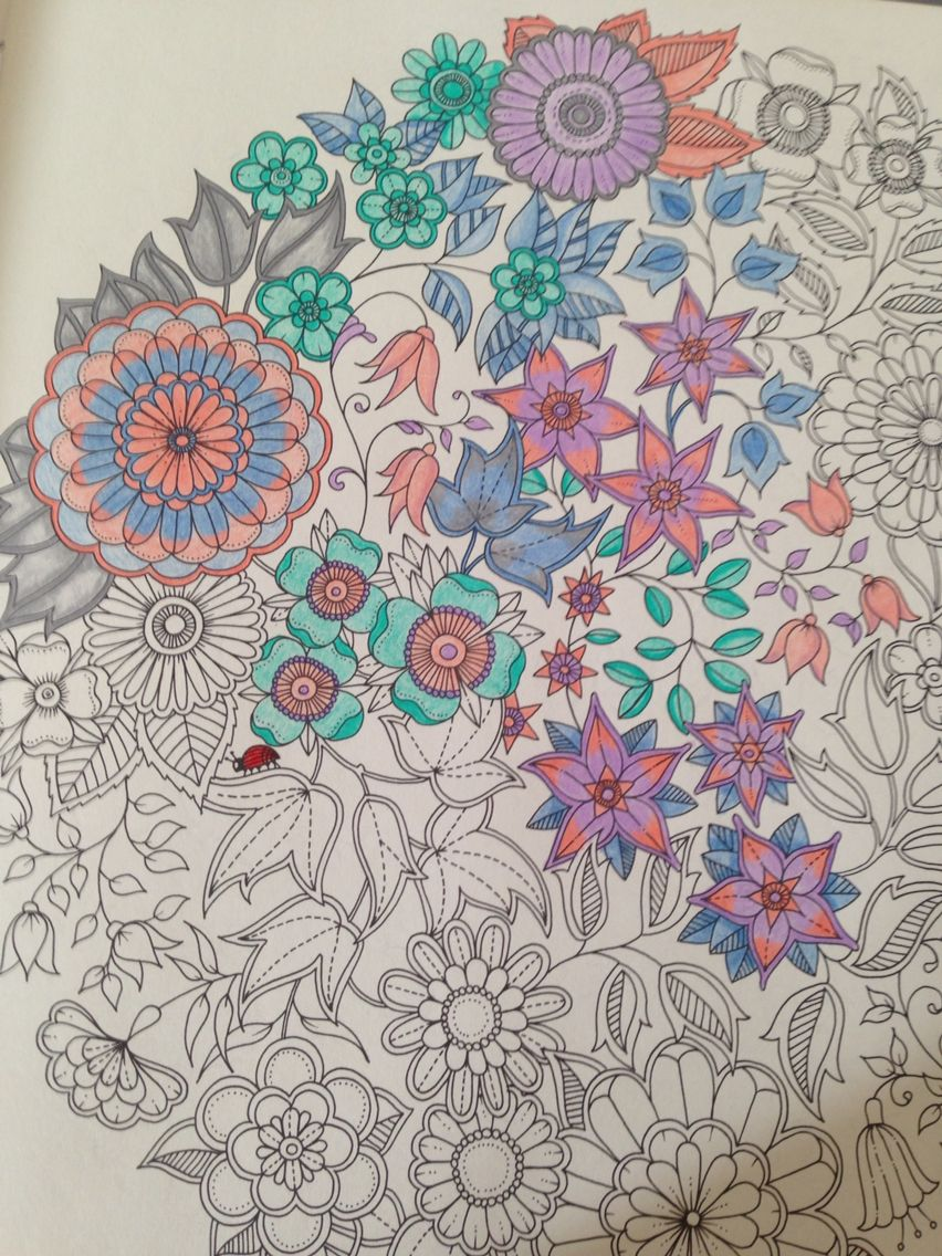 pag 3 of my secret garden coloring book - My Secret Garden Coloring Book