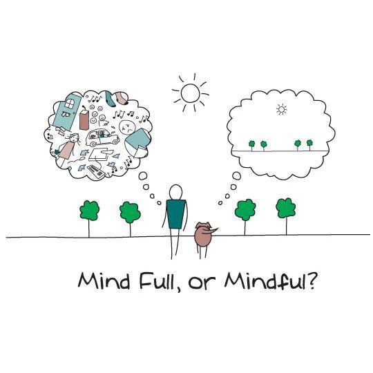 #mindfulquote #lifestylequote #inspirationalquote #