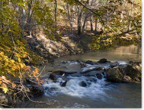 Hard Labor Creek State Park Georgia State Parks Georgia State Parks State Parks Camping World Locations