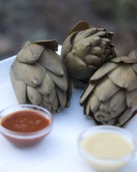 Consider adding this veggie to your regular eating plan: Health Benefits of Artichokes