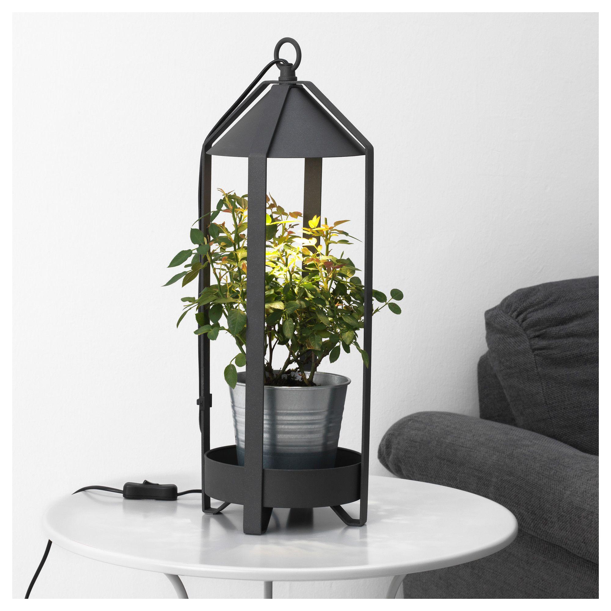 KRYDDA Pflanzenhalter LED Pflanzenlampe Jetzt bestellen unter
