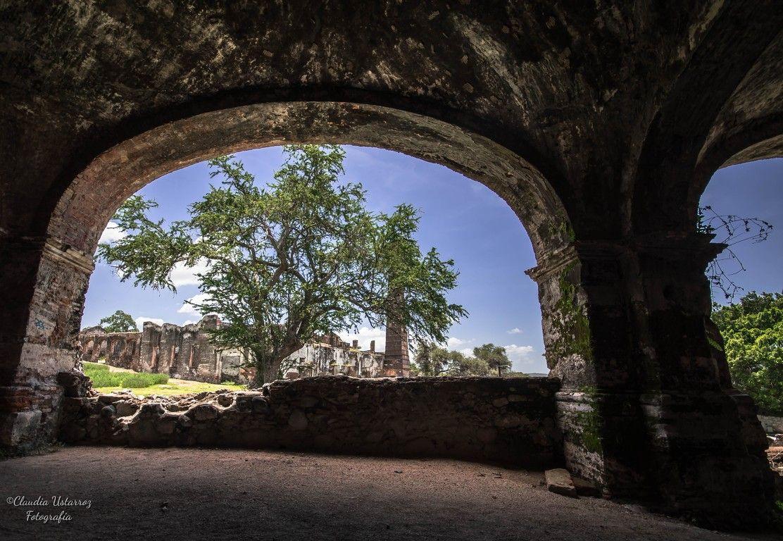 Foto Safari Mx Foto Safari Ex hacienda Cuahuixtla y Cuautla