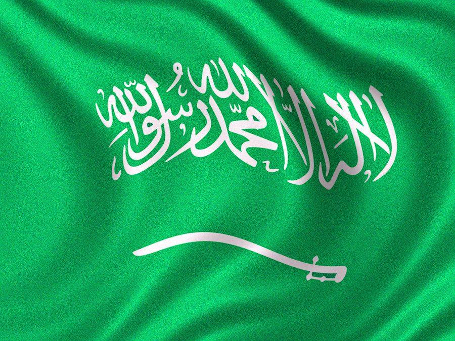 علم السعودية 2018 صور العلم السعودي عالم الصور Neon Signs Photography Inspiration Portrait Image