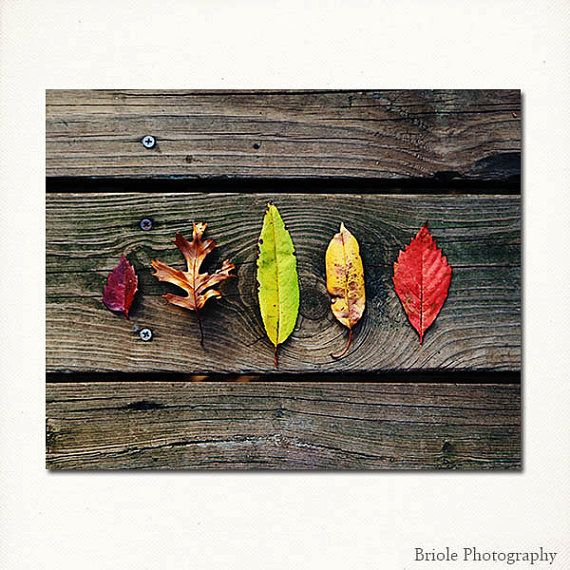 Legends of the fall.. by Jean Hagler on Etsy