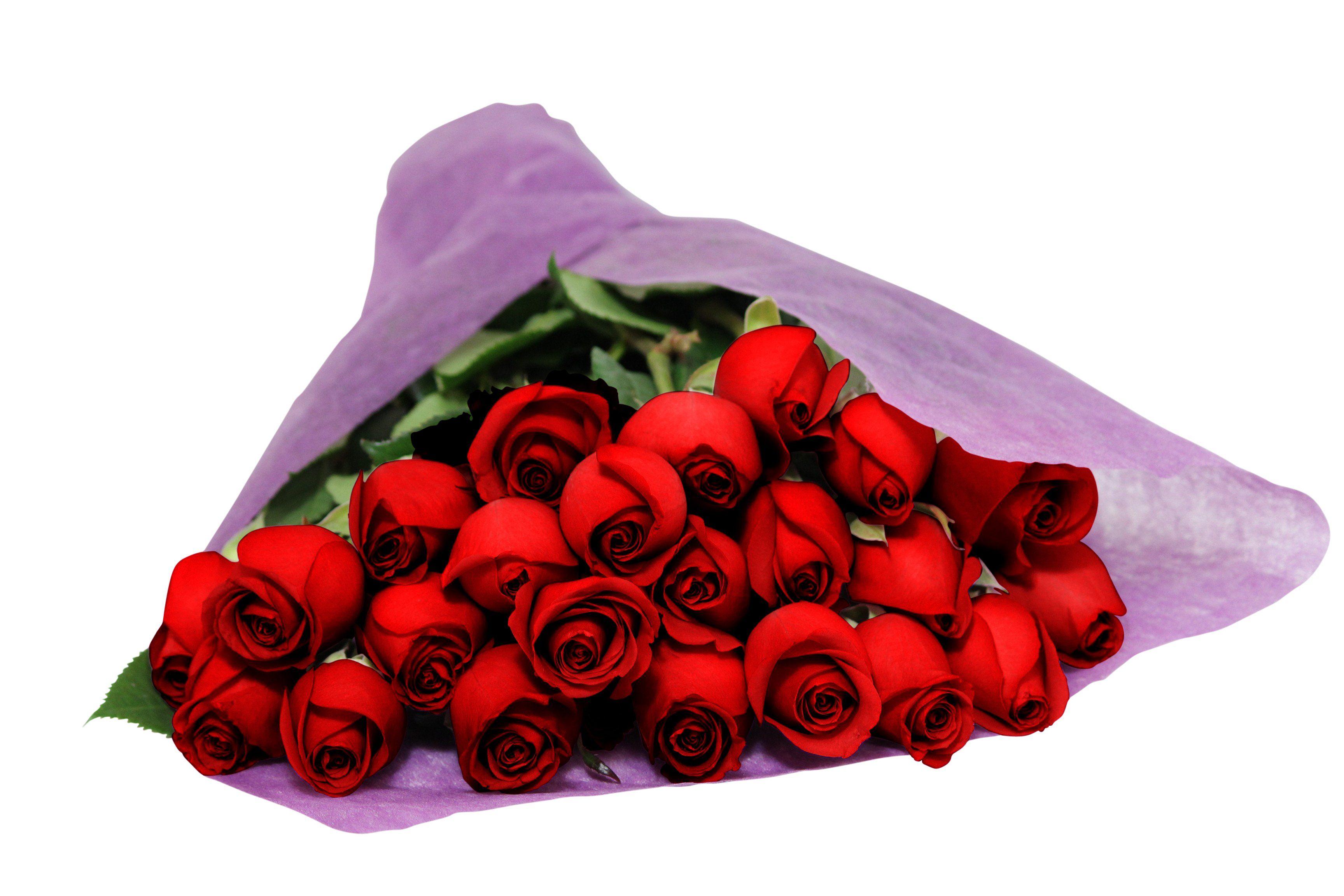 Bouquet of long stemmed red roses two dozen the kabloom flower reviewsmspy