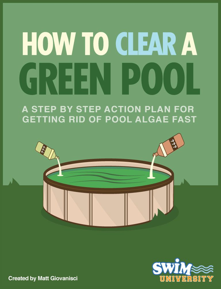 How to get rid of algae in your pool green pool water