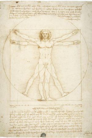 Einzig die penibel und plastisch gezeichneten anatomischen Studien befriedigen zugleich das medizinische wie das ästhetische Interesse, doch hat der Kauz Leonardo nie als Arzt gearbeitet und sein kaltes Wissen nicht zur Heilung von Menschen genutzt. Der vitruvianische Mensch von Leonardo da Vinci