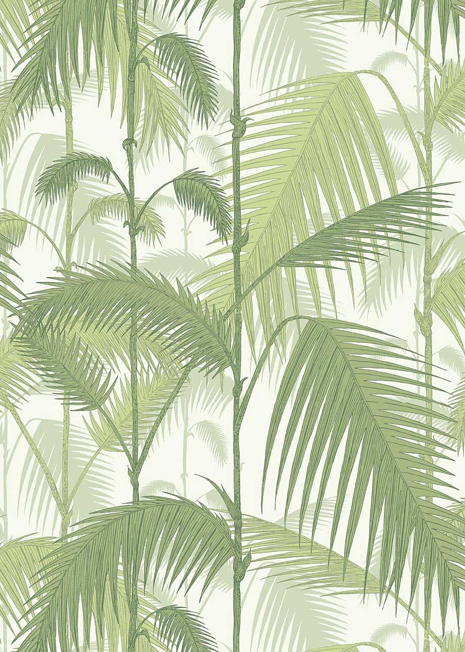 Tapete Jungle Tapete Palm Jungle 23951001 Von Cole And Son Nesting Walls
