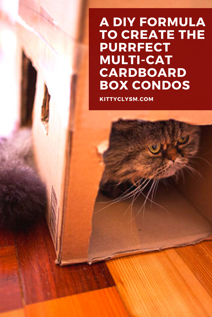 A Diy Formula To Create The Purrfect Multi Cat Cardboard Box Condos In 2020 Cardboard Cat House Purrfect Homemade Cat Toys