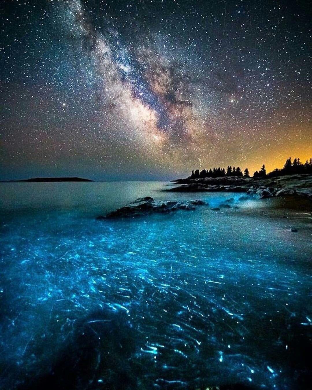 Milky Way Over Bioluminescent Ocean Nature Photography Maine Photography Beautiful Photography Nature