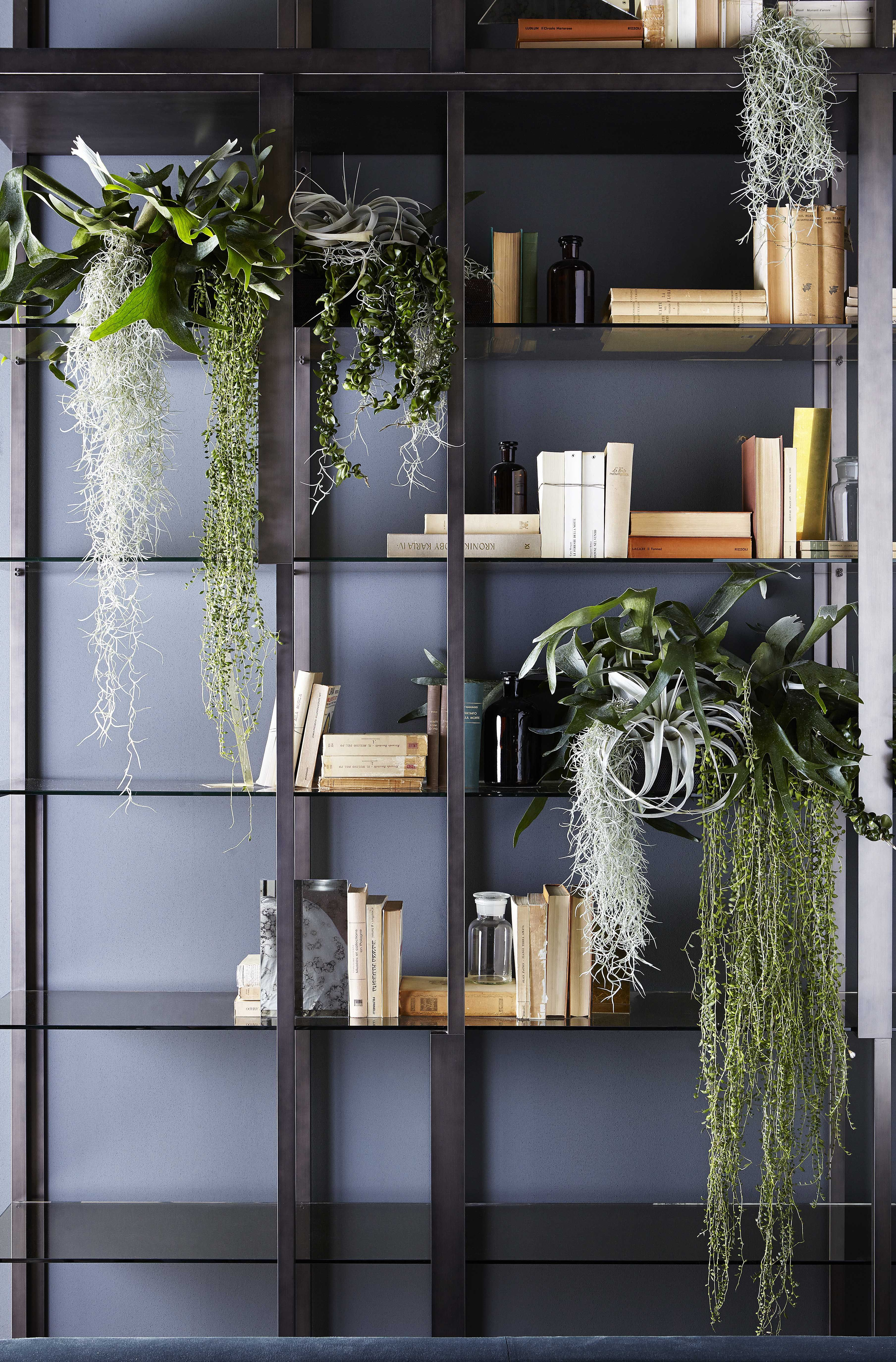 Tortona Shelving system in patinated bronze lacquered metal. 8mm ...