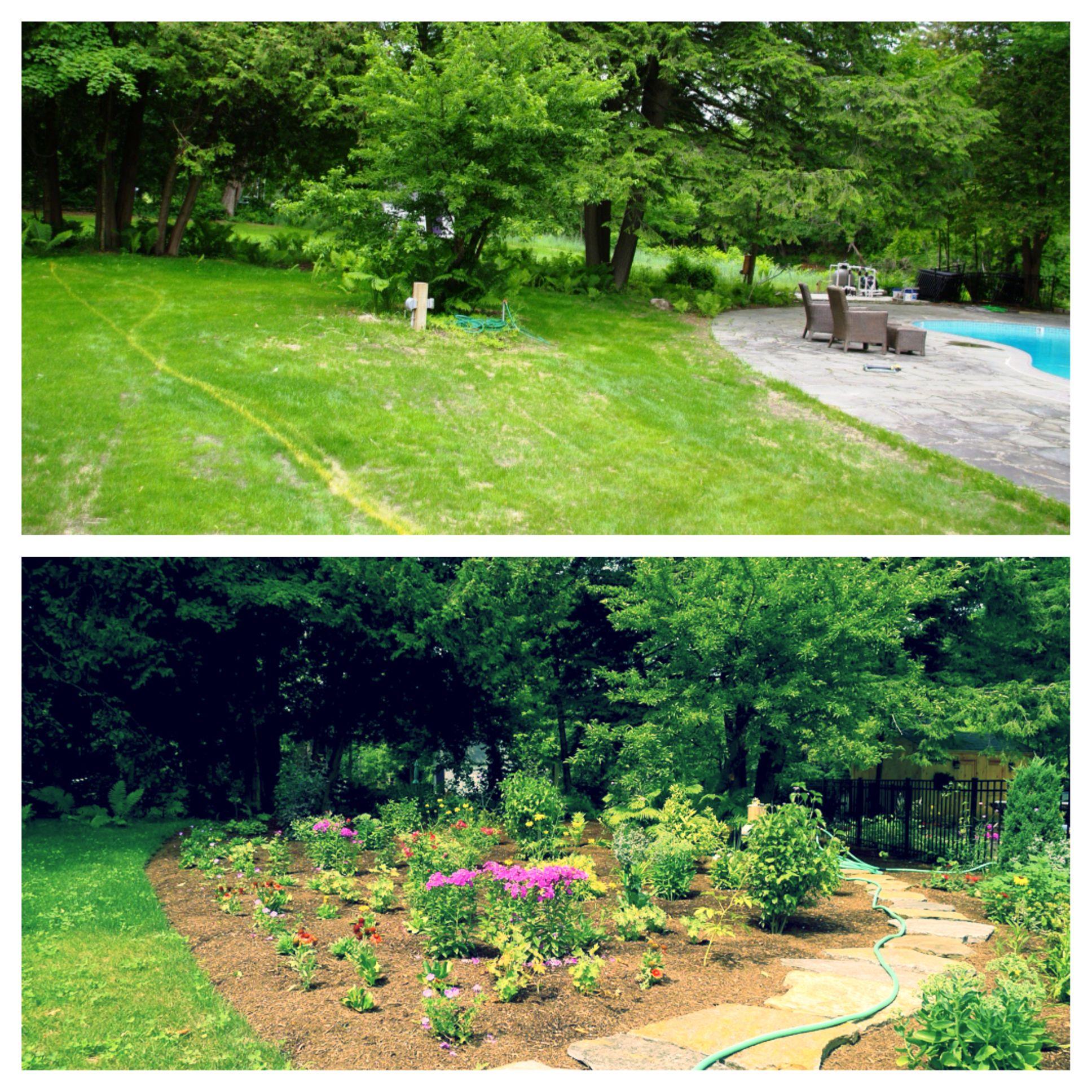 4f53c4a151cbdf76f74c191f3238e19e - Before And After Pictures Of Gardens