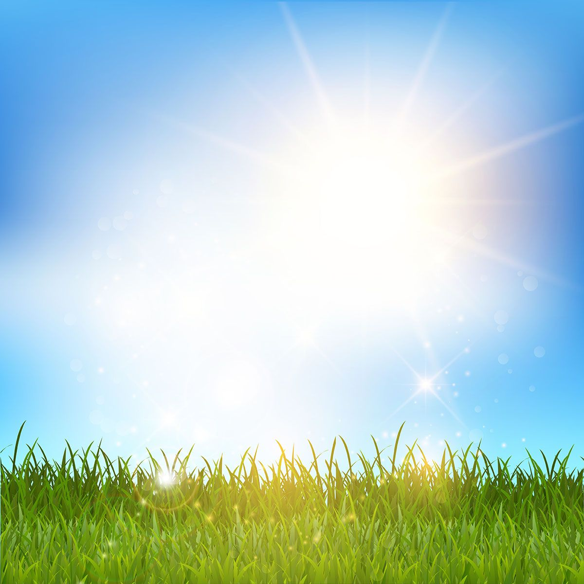 Blue Sky And Grass Landscape Background For Photography Free Spring Wallpaper Landscape Pictures