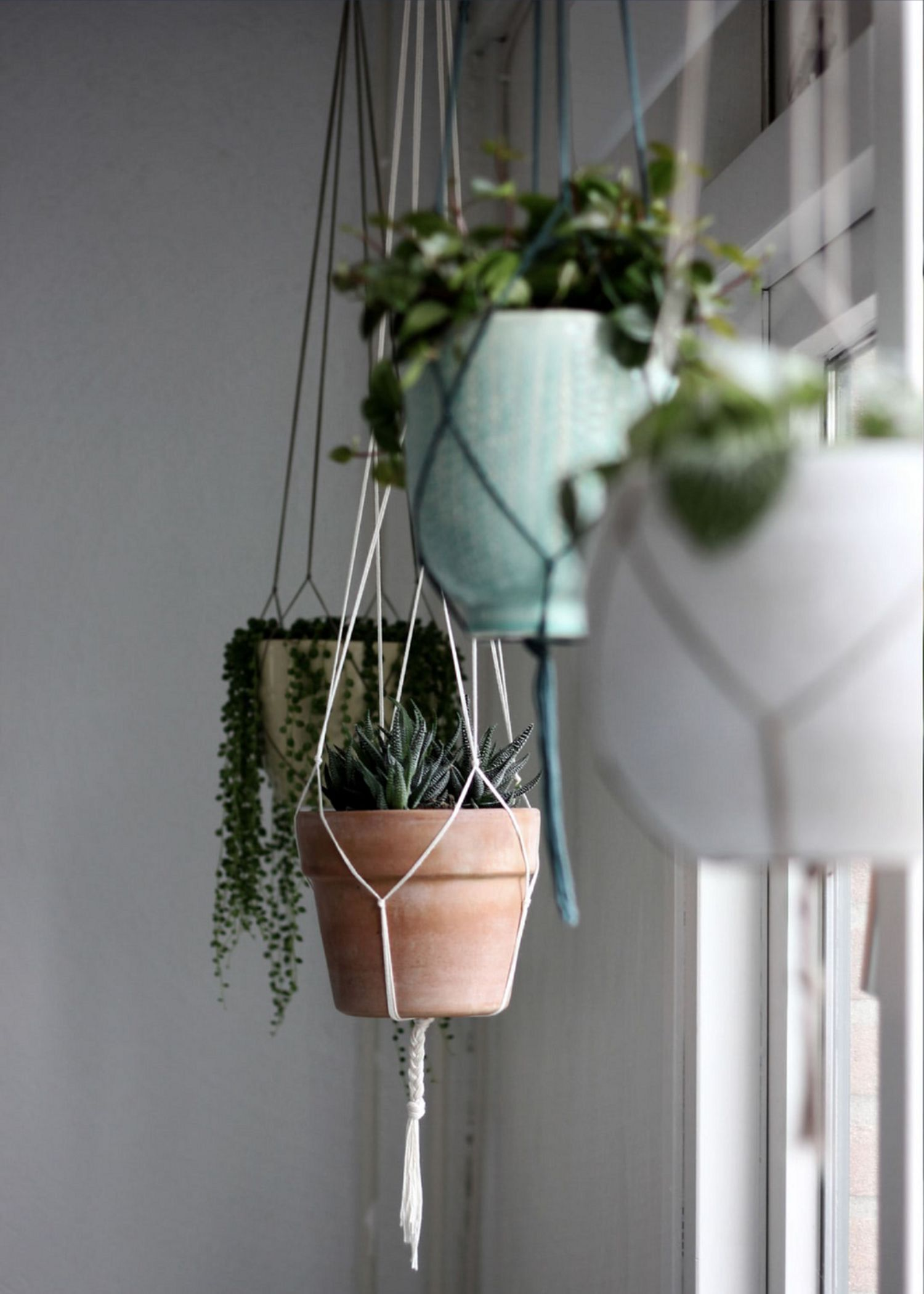 Flawless 15 DIY Window Hanging Plants Ideas For Your Home