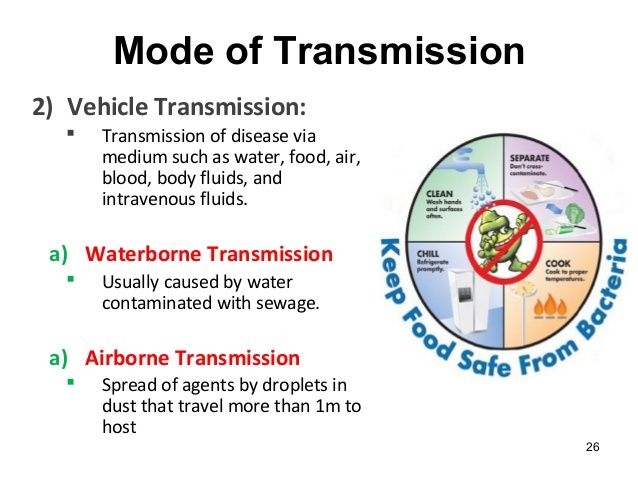 the different modes of transmission of disease. | db-3 | pinterest, Muscles