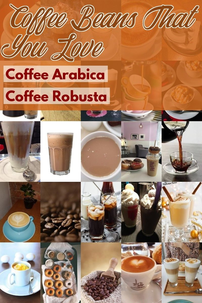 Coffee arabica and coffee robusta are 2 main types of