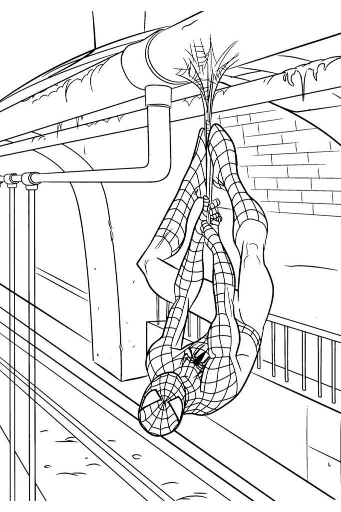 top 25 spiderman ausmalbilder  malvorlagen ausmalbilder