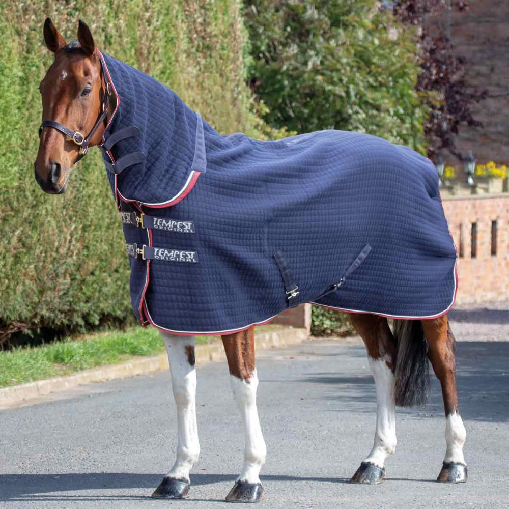Cooler Combo Rug