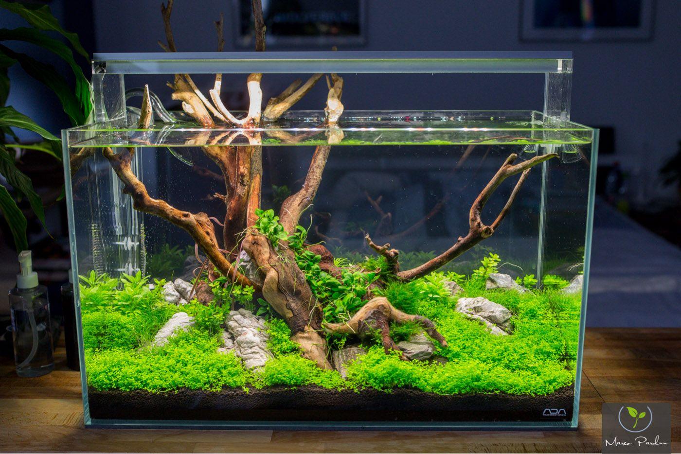 Led badezimmerlampe ~ Diy led lampe selber bauen akvárium aquariums