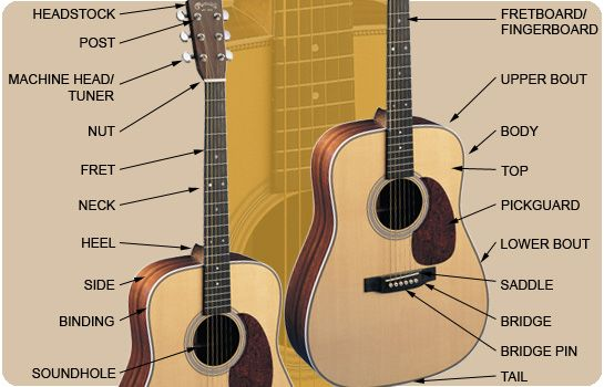 The 6 Best Beginner Acoustic Guitars and Electric Guitars ...