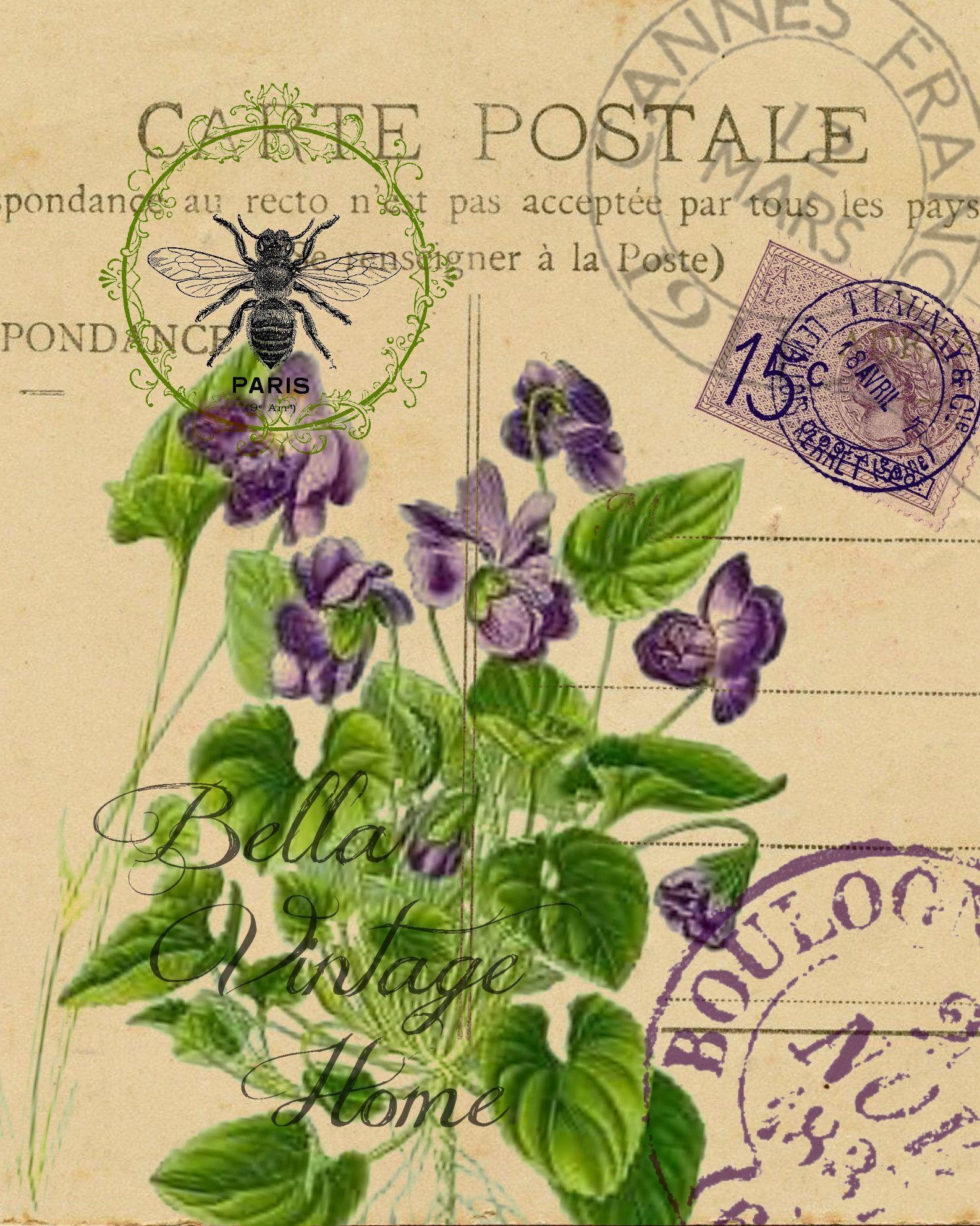 botanical violet carte postale print pillow note cards tea towel artworks postcards and paper. Black Bedroom Furniture Sets. Home Design Ideas