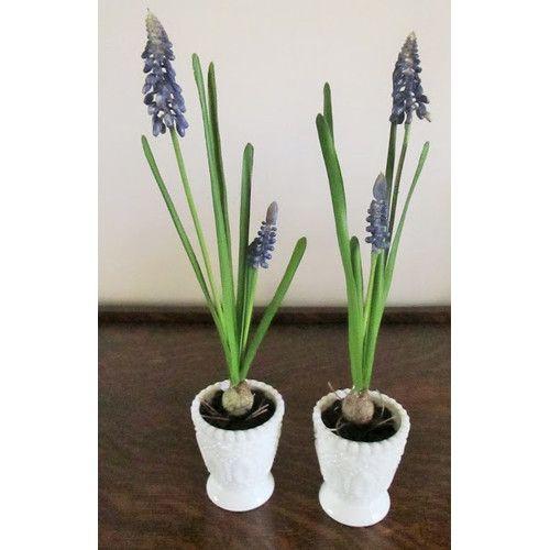 Silkmama Blue Muscari Bulb Pair in Votive Vase