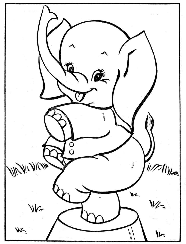 40 Desenhos De Circo Para Colorir E Imprimir Circo Para Colorir