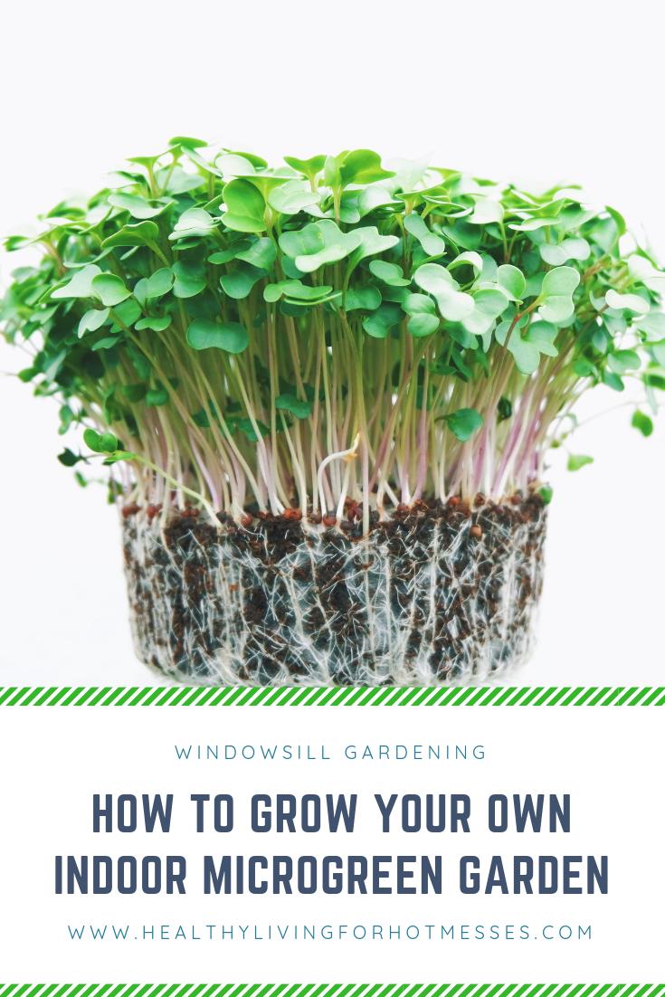 Grow Your Own Indoor Microgreen Garden Hydroponic Gardening