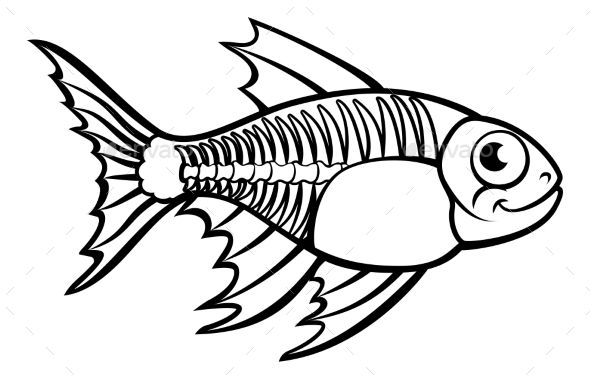 Xray Tetra Fish Cartoon Character Graphic Design Outline
