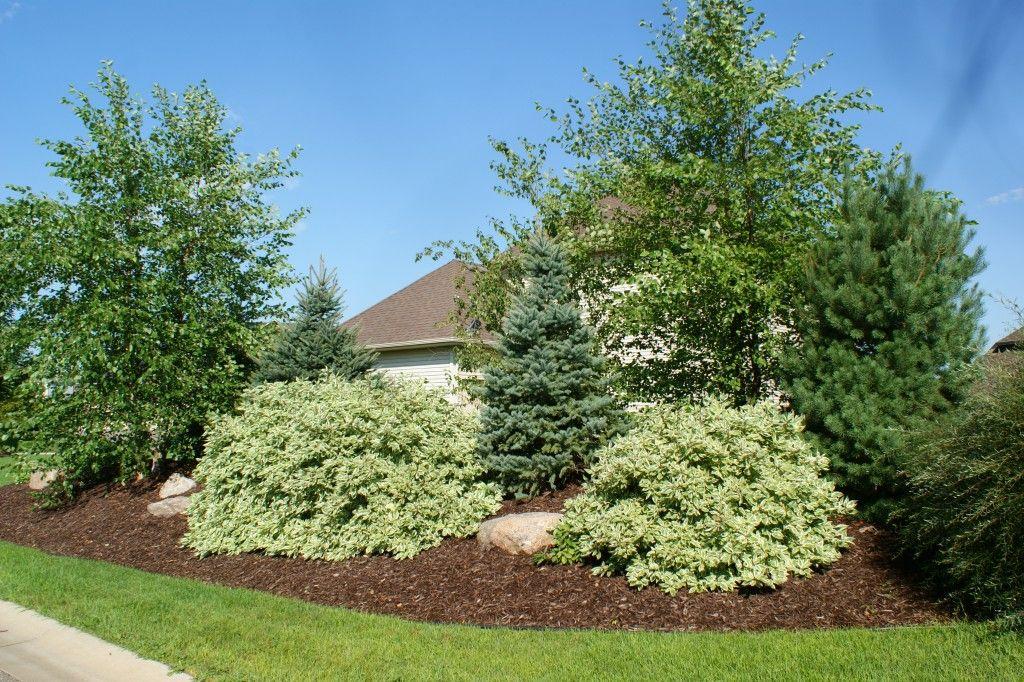 Corner windbreak landscape plan google search for Privacy garden designs