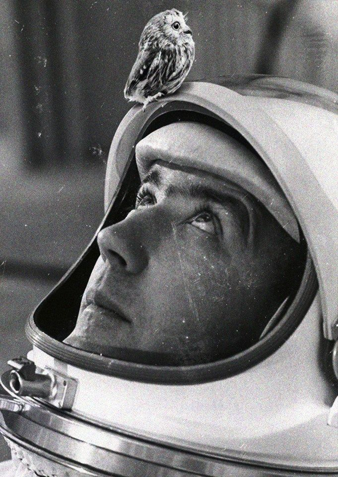 astronaut space love - photo #24
