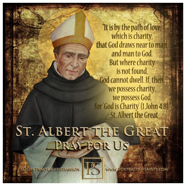 Stalbert The Great A Doctor Of The Church Who Taught St Thomas