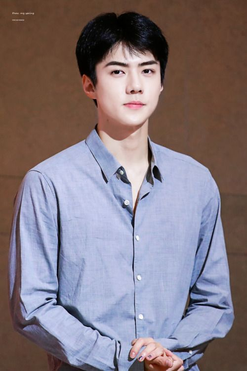 Sehun - 170815 Busan fansign Credit: 바람의꽃이되어서. (부산 팬 ...