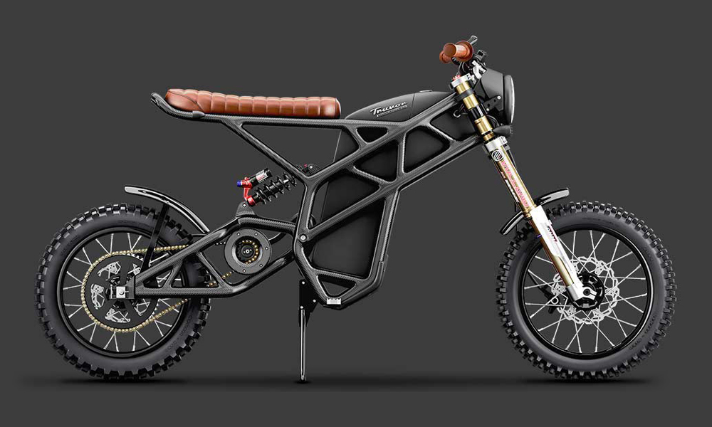 Denzel Truvor Carbon Fiber Electric Scrambler Motorcycle In 2020 Electric Motorcycle Electric Bike Scrambler