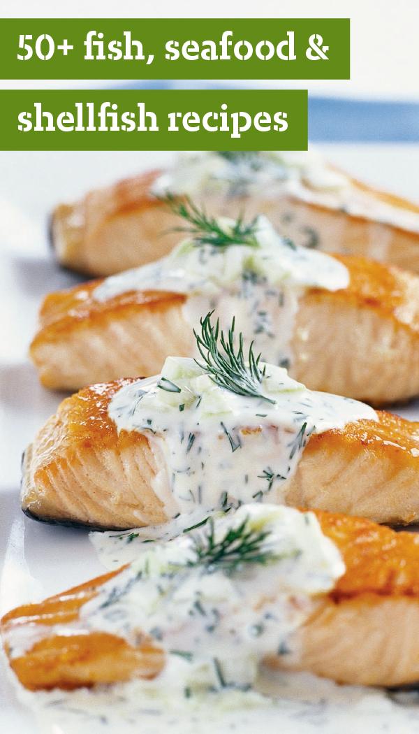 Fish recipes seafood shellfish more think salmon tilapia fish recipes seafood shellfish more think salmon tilapia shrimp ccuart Image collections