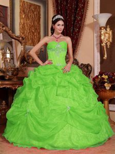 Spring Green Ball Gown Perfect Sweetheart Quince Dress in Organza