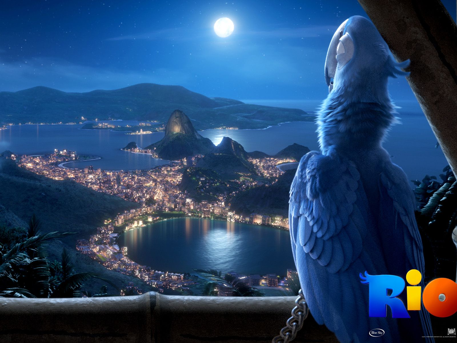 rio movie 1600x1200 wallpapers - movie wallpapers | rio | pinterest