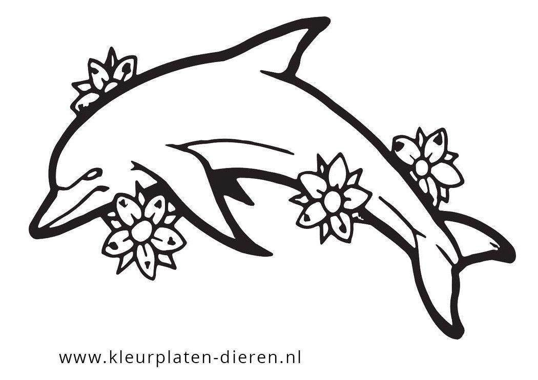 Kleurplaat Dolfijn Kleurplaten Dierenkleurplaten Dieren Tattoo