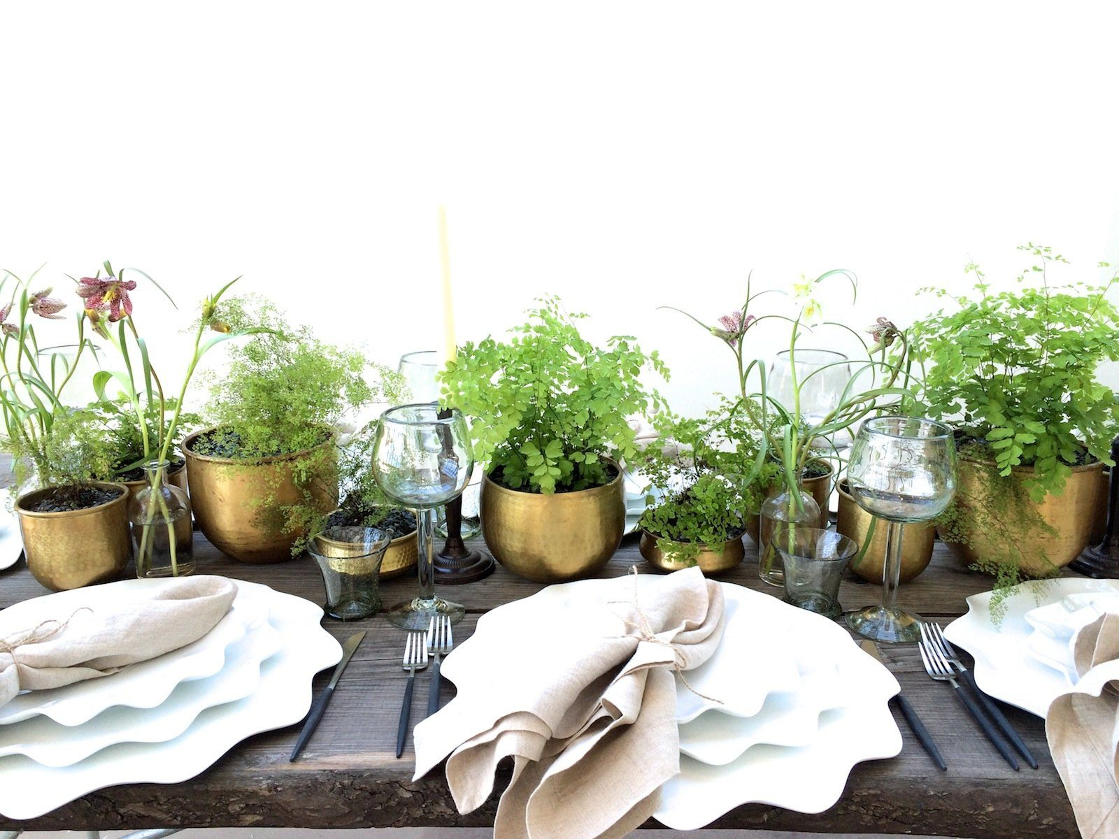 Potted Plants Wedding Centerpiece Look For Groupings Of Plants, Says