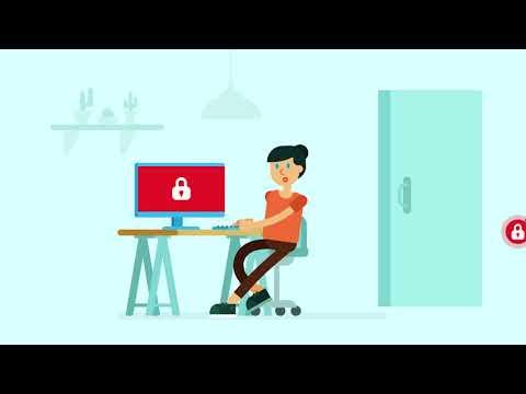 Best software options online