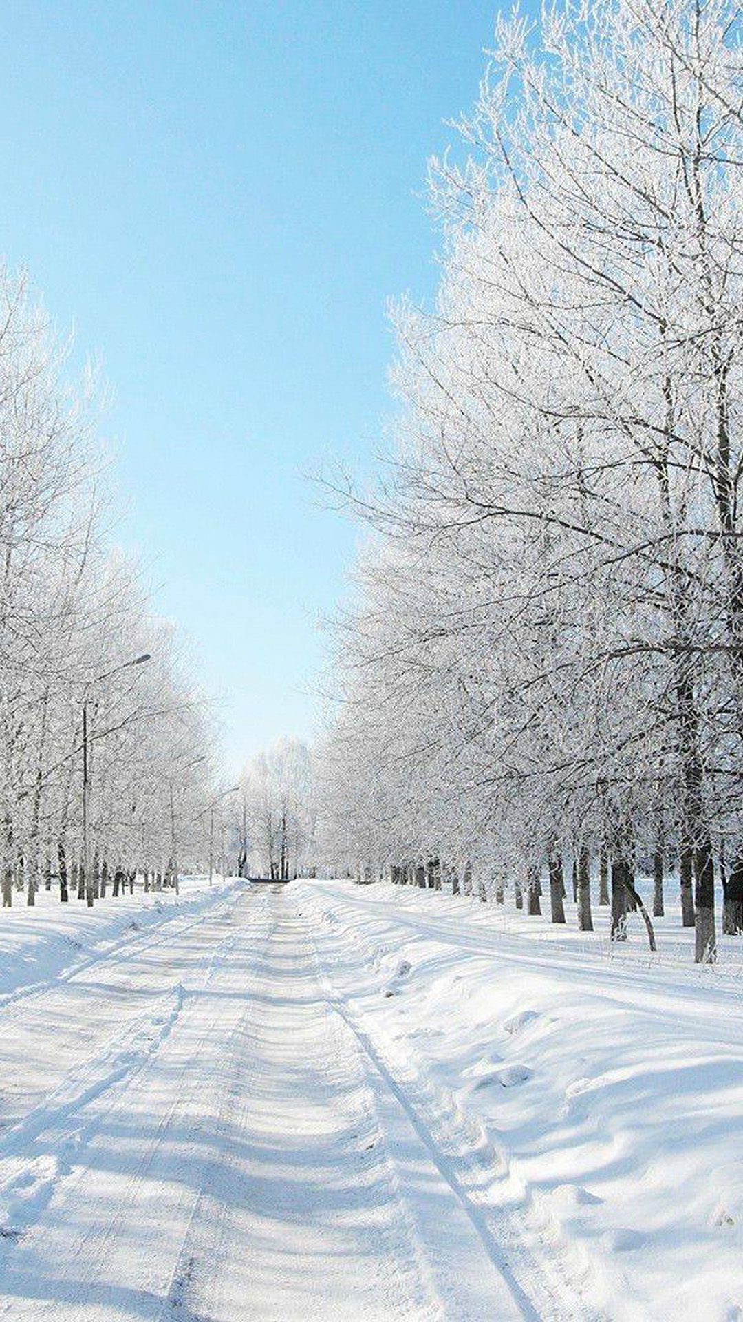 Winter Wallpaper Hd Resolution Hupages Download Iphone