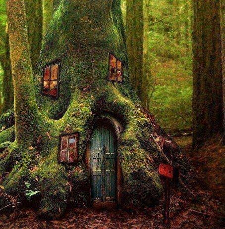 Not real, but definitely where I would imagine Pixies or Fairies to live
