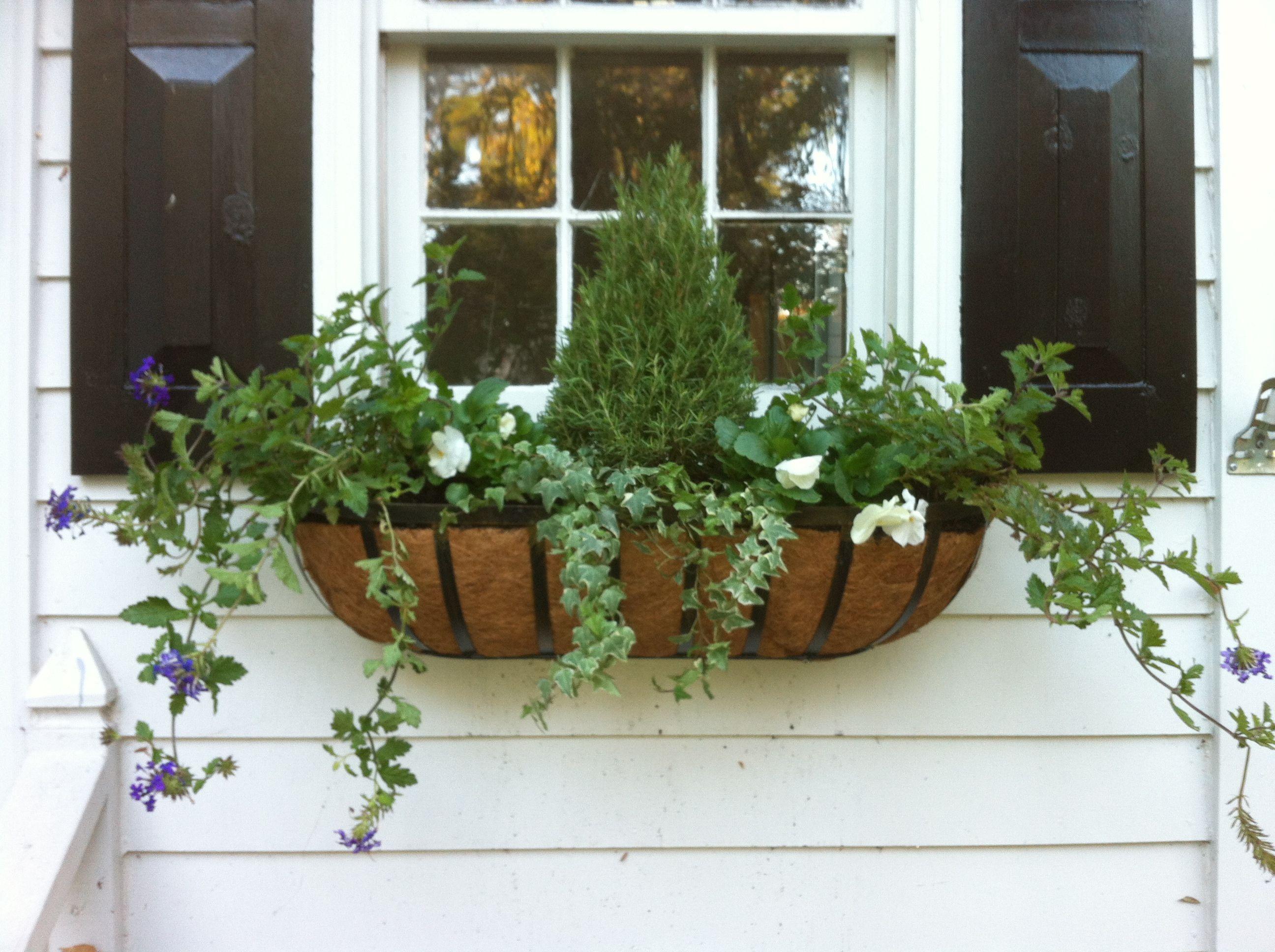 Pin By Elizabeth Preyer On My Style Winter Window Boxes Window Box Garden Room