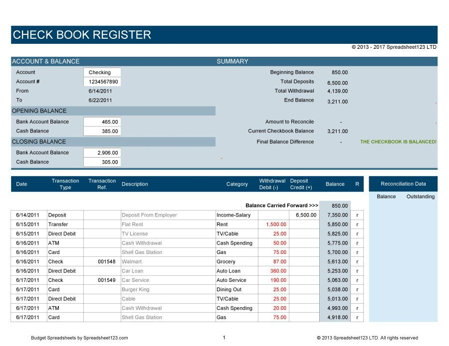 Choose From  Professional Checkbook Register Templates Our