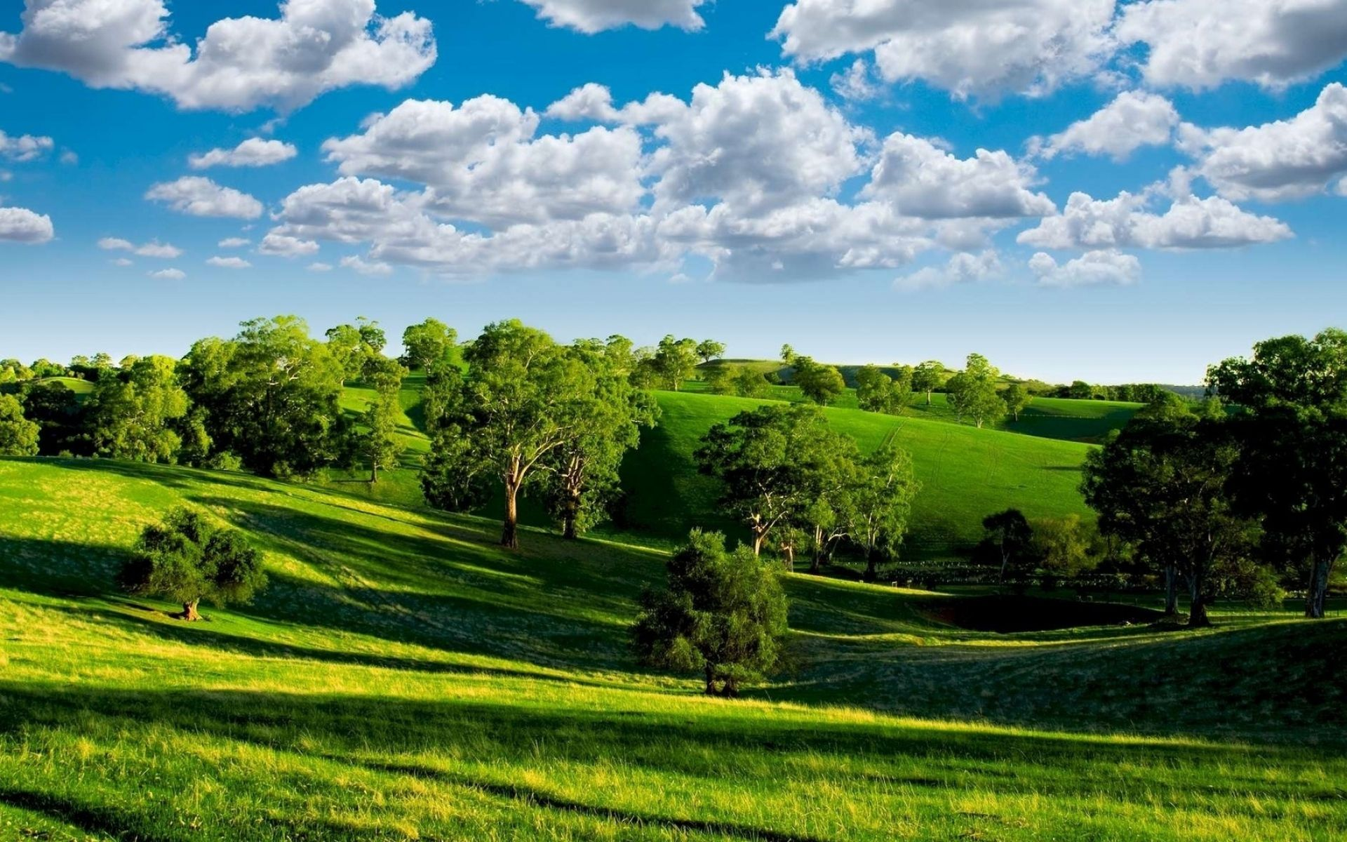 Download Wallpaper 1920x1200 Summer Hills Trees Green Meadows Clouds Sky Ease Landscape Shadows 1920x120 Green Landscape Landscape Wallpaper Landscape