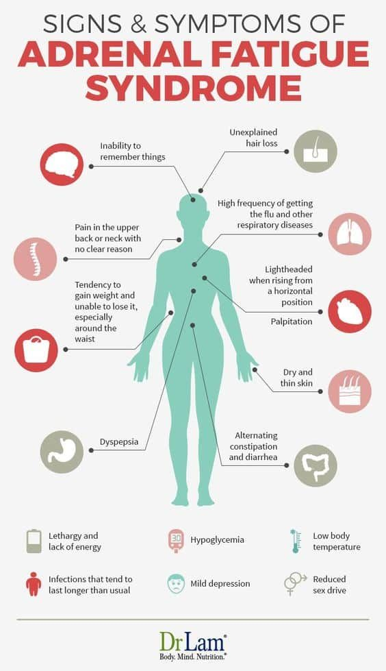 Stressed Out Signs And Symptoms Infograhic - The W