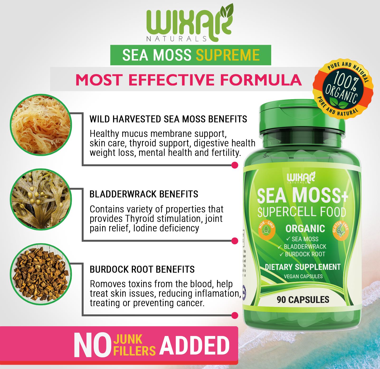 Dr Sebi How To Prepare And Store Sea Moss Youtube Sea Moss Dr Sebi Dr Sebi Alkaline Food